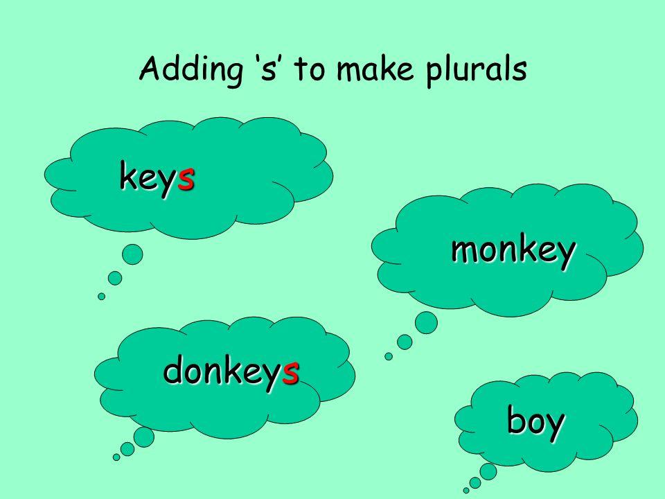 Adding s to make plurals keys monkey donkeys boy