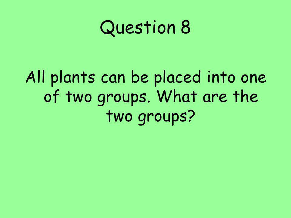 Question 8 All plants can be placed into one of two groups. What are the two groups?