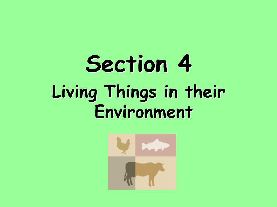 Section 4 Living Things in their Environment