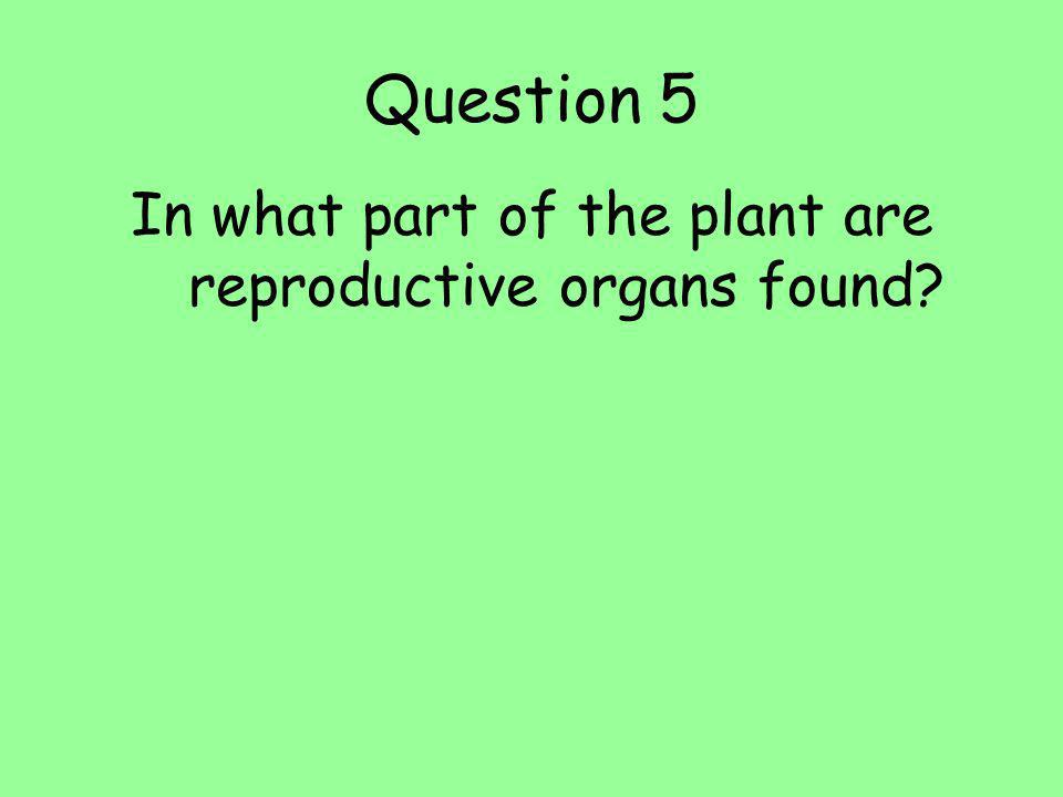 Question 6 In what part of the plant are seeds made? A.Flowers B.Roots C.Leaves