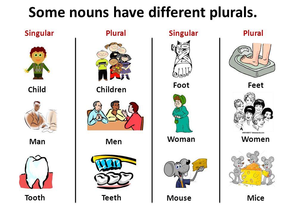 Some nouns have different plurals. Child Man Tooth Children Men Teeth SingularPlural Foot Woman Mouse Feet Women Mice SingularPlural