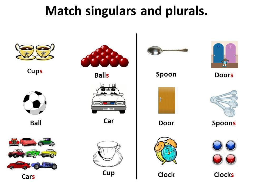 Match singulars and plurals. Ball Car Clock Balls Cars Clocks Cup Cups Spoon Spoons Doors Door
