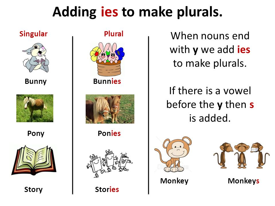 Adding ies to make plurals. Bunny Pony Story Bunnies Ponies Stories SingularPlural When nouns end with y we add ies to make plurals. If there is a vow