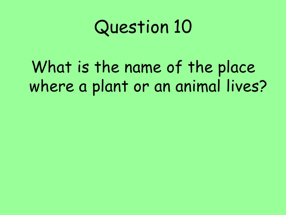 Question 10 What is the name of the place where a plant or an animal lives?