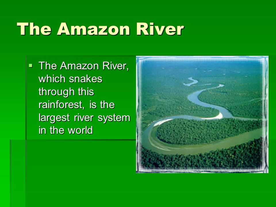 Mysteries of the Amazon Can you think of any other mysteries of the Amazon? Can you think of any other mysteries of the Amazon? There are stories of g