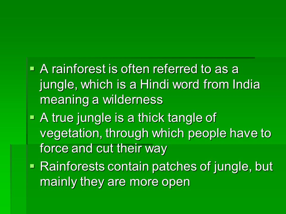 Rain Forests The name rain forest was first used at the end of the 19 th Century to describe forests that grow in constantly wet conditions The name r