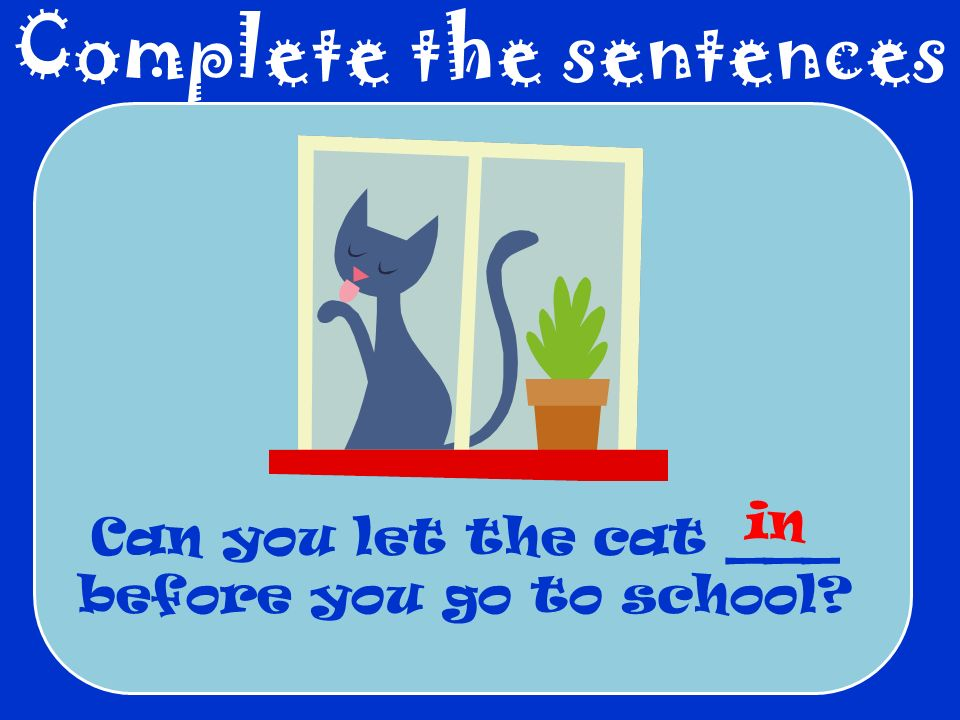 Complete the sentences Can you let the cat ___ before you go to school? in