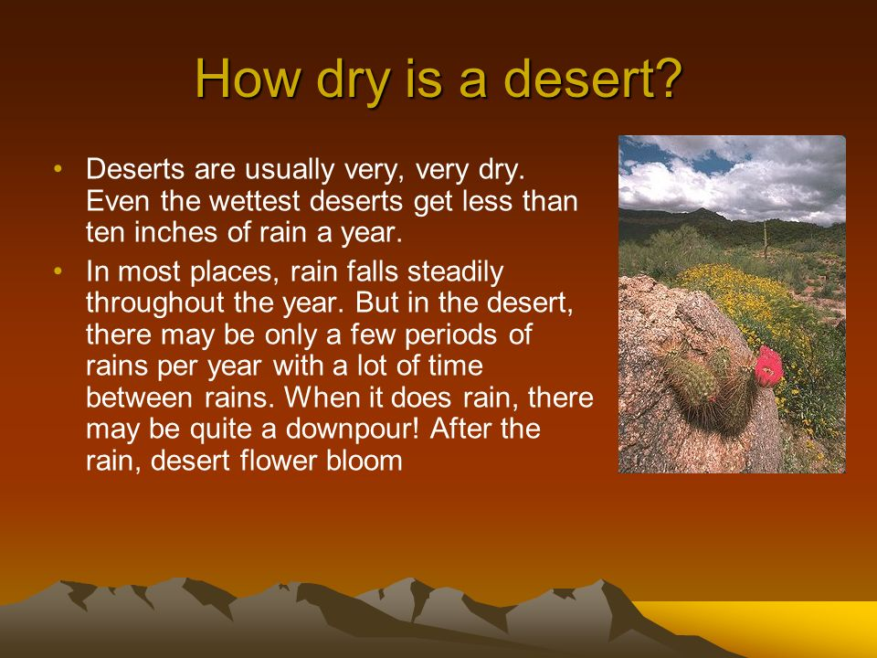 How dry is a desert? Deserts are usually very, very dry. Even the wettest deserts get less than ten inches of rain a year. In most places, rain falls