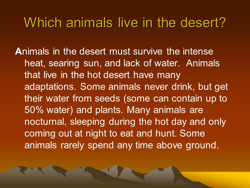 Which animals live in the desert? Animals in the desert must survive the intense heat, searing sun, and lack of water. Animals that live in the hot de