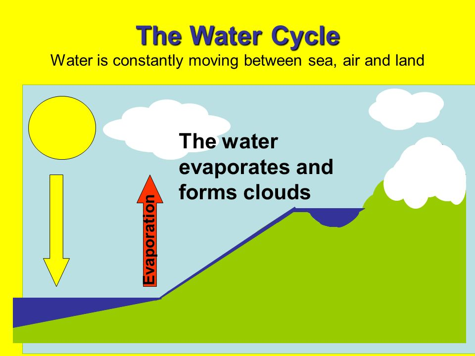 The Water Cycle The Water Cycle Water is constantly moving between sea, air and land Evaporation The water evaporates and forms clouds