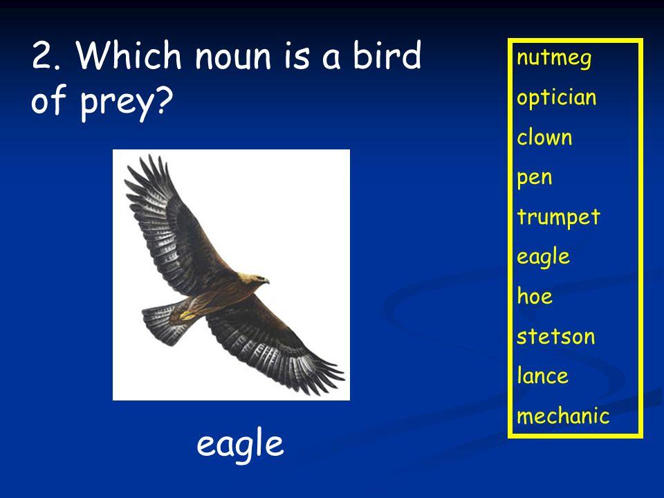 nutmeg optician clown pen trumpet eagle hoe stetson lance mechanic 2. Which noun is a bird of prey? eagle