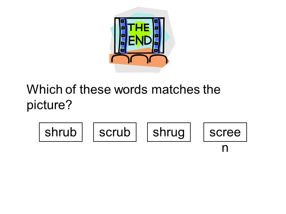 Which of these words matches the picture? shrubscrubshrugscree n