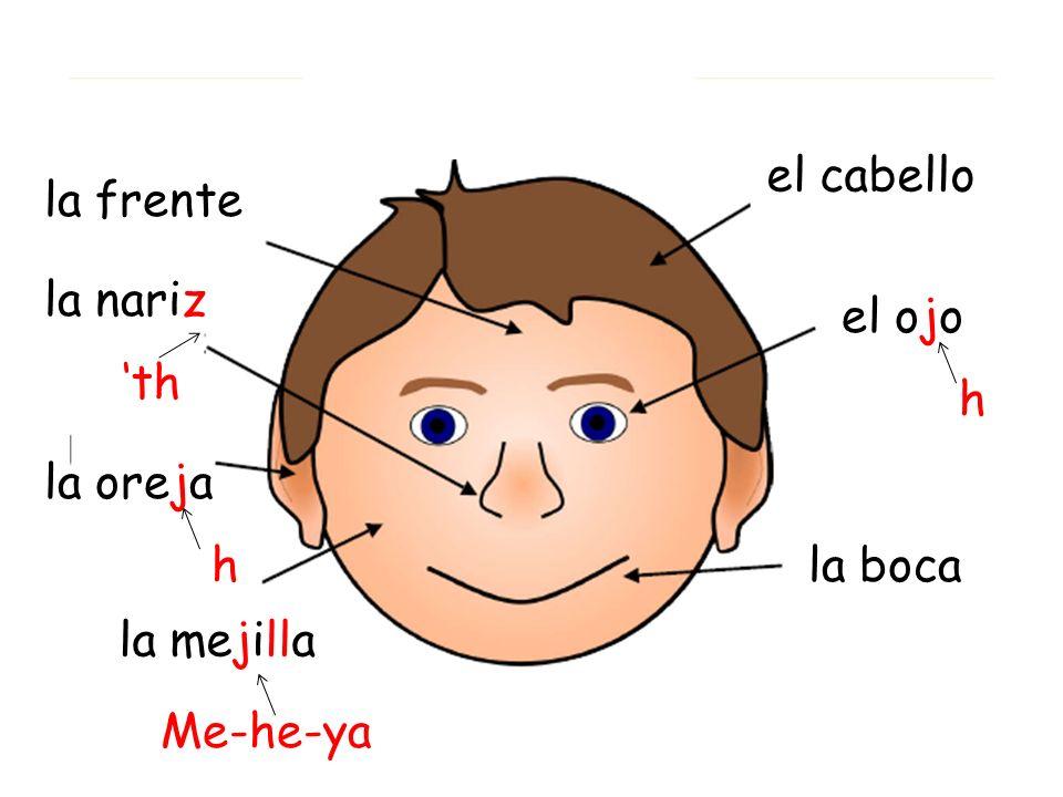 el ojo la boca la nariz h th la oreja h la mejilla Me-he-ya la frente el cabello
