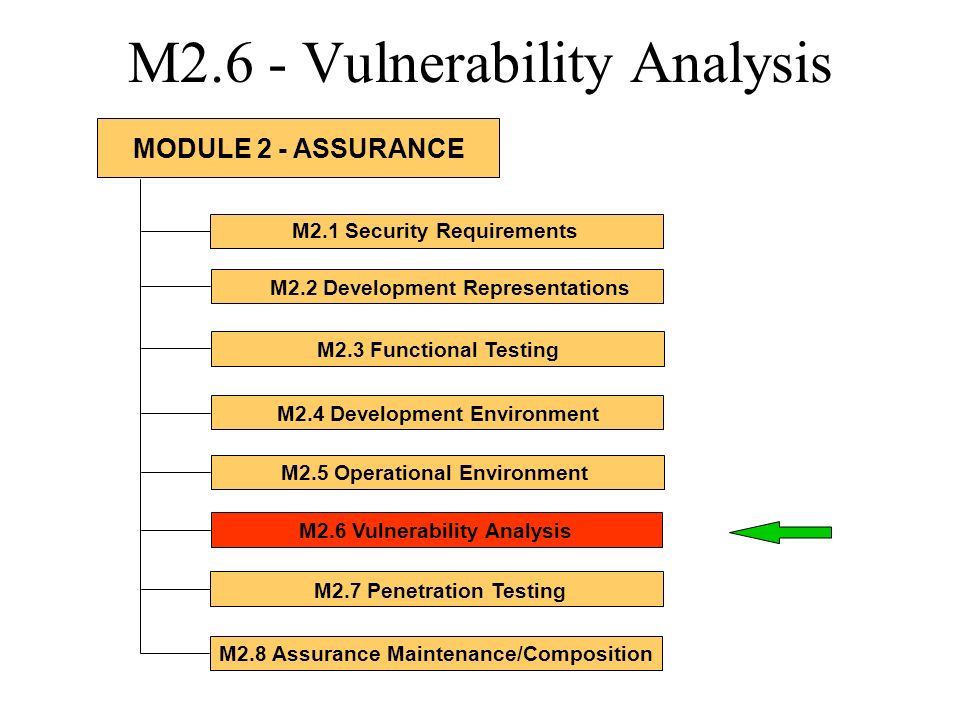 M2.6 - Vulnerability Analysis M2.1 Security Requirements M2.2 Development Representations M2.3 Functional Testing M2.4 Development Environment M2.5 Op