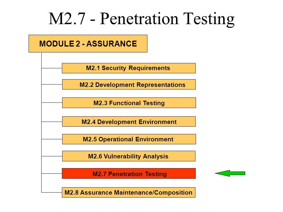 M2.7 - Penetration Testing M2.1 Security Requirements M2.2 Development Representations M2.3 Functional Testing M2.4 Development Environment M2.5 Opera