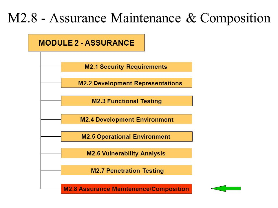 M2.8 - Assurance Maintenance & Composition M2.1 Security Requirements M2.2 Development Representations M2.3 Functional Testing M2.4 Development Enviro