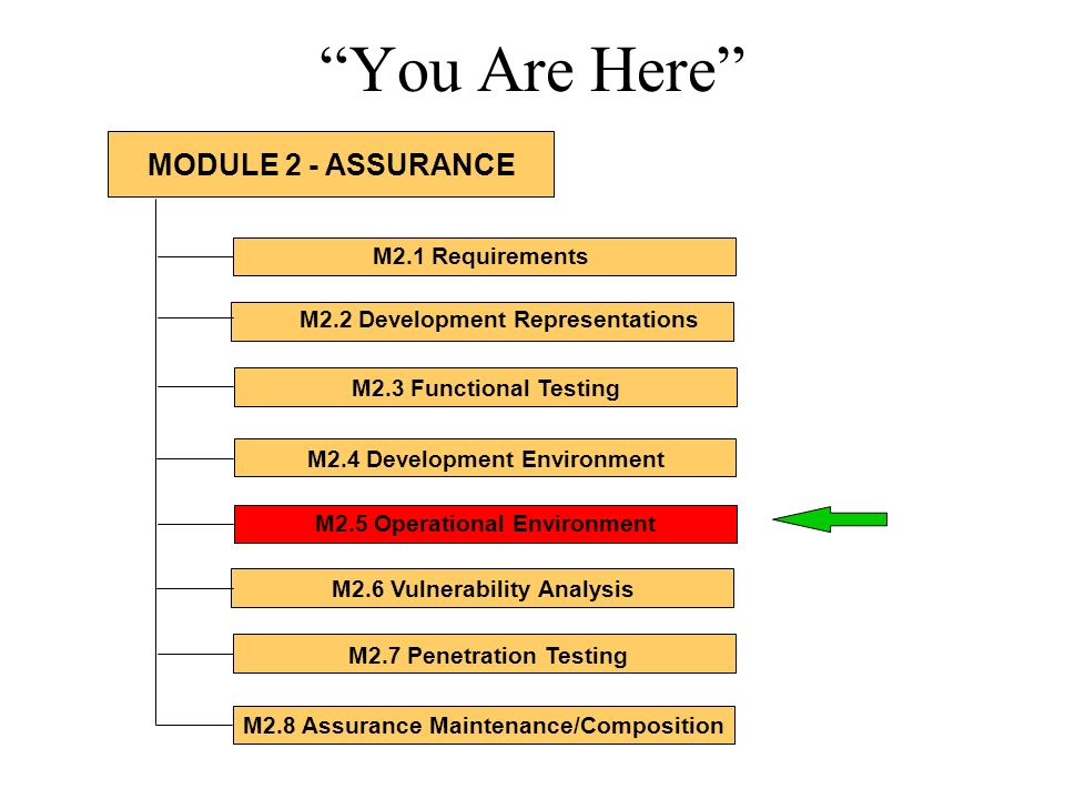You Are Here M2.1 Requirements M2.2 Development Representations M2.3 Functional Testing M2.4 Development Environment M2.5 Operational Environment M2.6 Vulnerability Analysis M2.7 Penetration Testing M2.8 Assurance Maintenance/Composition MODULE 2 - ASSURANCE