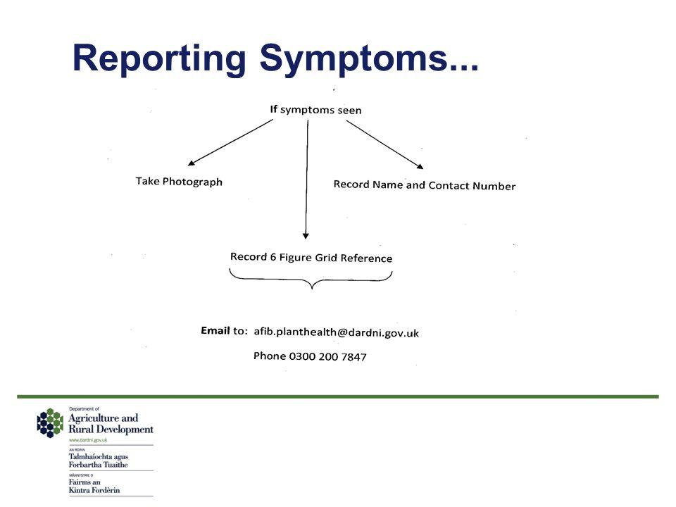 Reporting Symptoms...