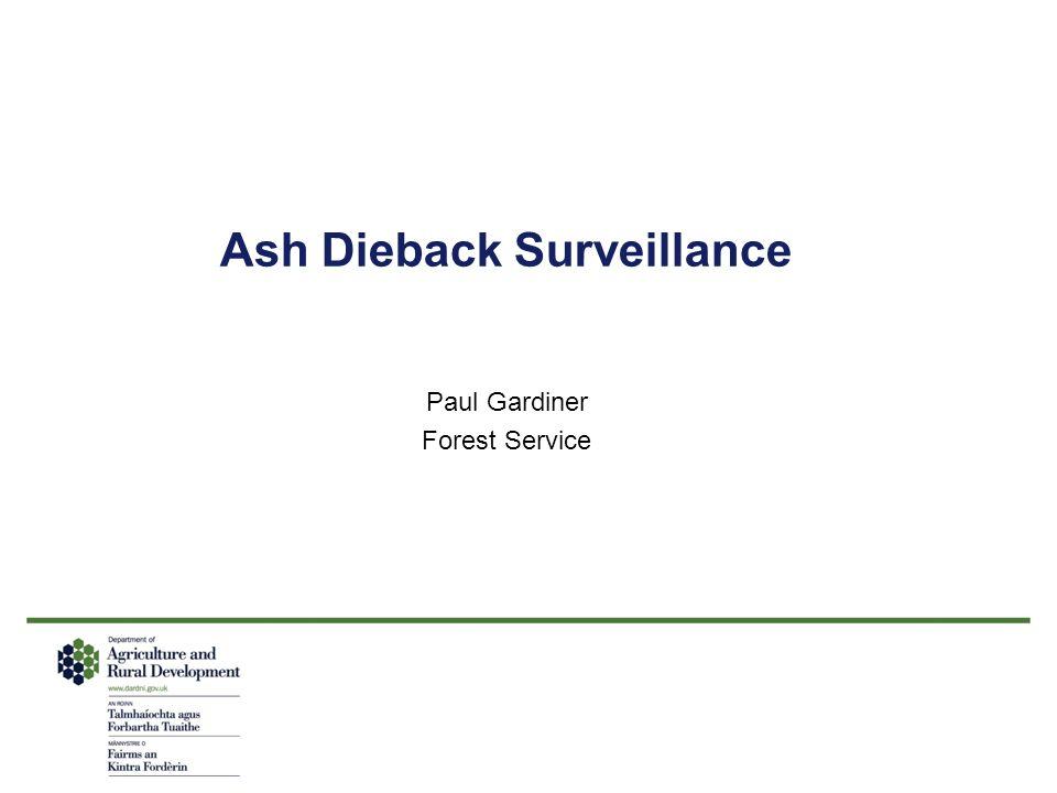 Ash Dieback Surveillance Paul Gardiner Forest Service