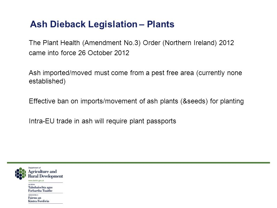 Ash Dieback Legislation – Plants The Plant Health (Amendment No.3) Order (Northern Ireland) 2012 came into force 26 October 2012 Ash imported/moved mu