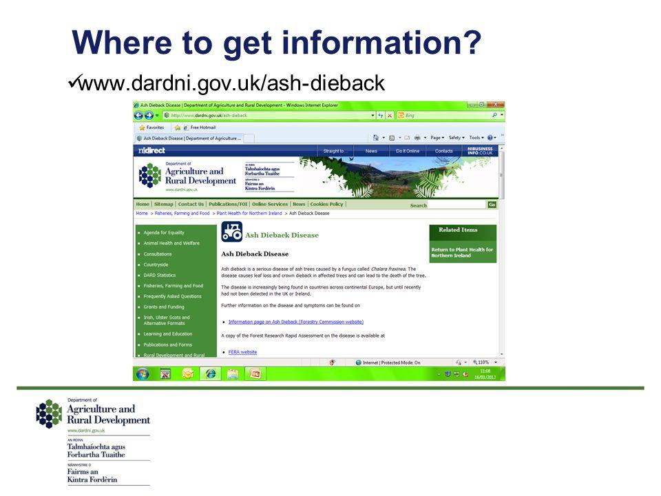 Where to get information? www.dardni.gov.uk/ash-dieback
