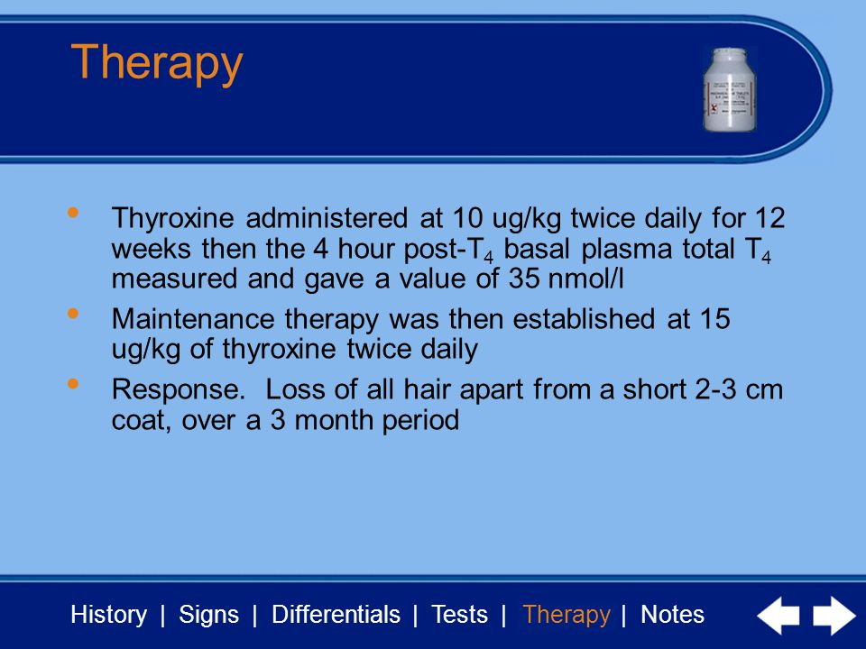 History | Signs | Differentials | Tests | Therapy | Notes Therapy Thyroxine administered at 10 ug/kg twice daily for 12 weeks then the 4 hour post-T 4 basal plasma total T 4 measured and gave a value of 35 nmol/l Maintenance therapy was then established at 15 ug/kg of thyroxine twice daily Response.