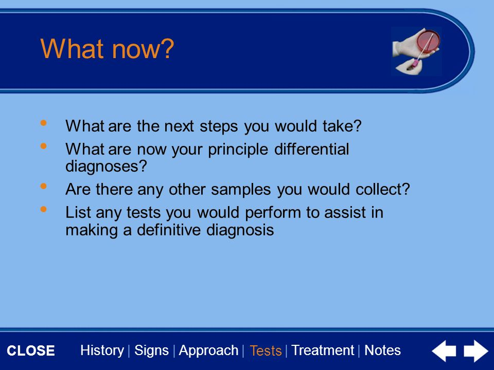 CLOSE History | Signs | Approach | Tests | Treatment | Notes What now.