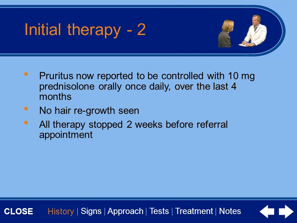 CLOSE History | Signs | Approach | Tests | Treatment | Notes Initial therapy - 2 Pruritus now reported to be controlled with 10 mg prednisolone orally once daily, over the last 4 months No hair re-growth seen All therapy stopped 2 weeks before referral appointment History Pruritus now reported to be controlled with 10 mg prednisolone orally once daily, over the last 4 months No hair re-growth seen All therapy stopped 2 weeks before referral appointment