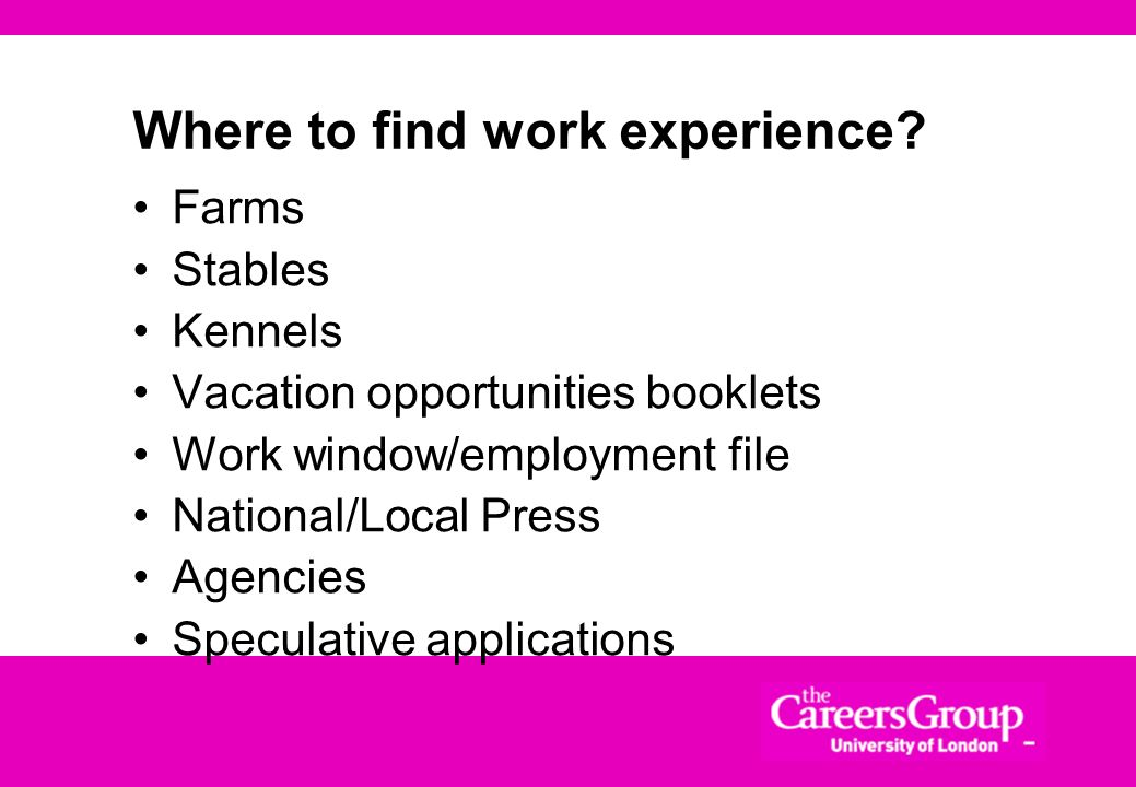 Types of work experience Formal work placements/internships Subject-related research schemes Advertised positions Non-advertised positions Voluntary p