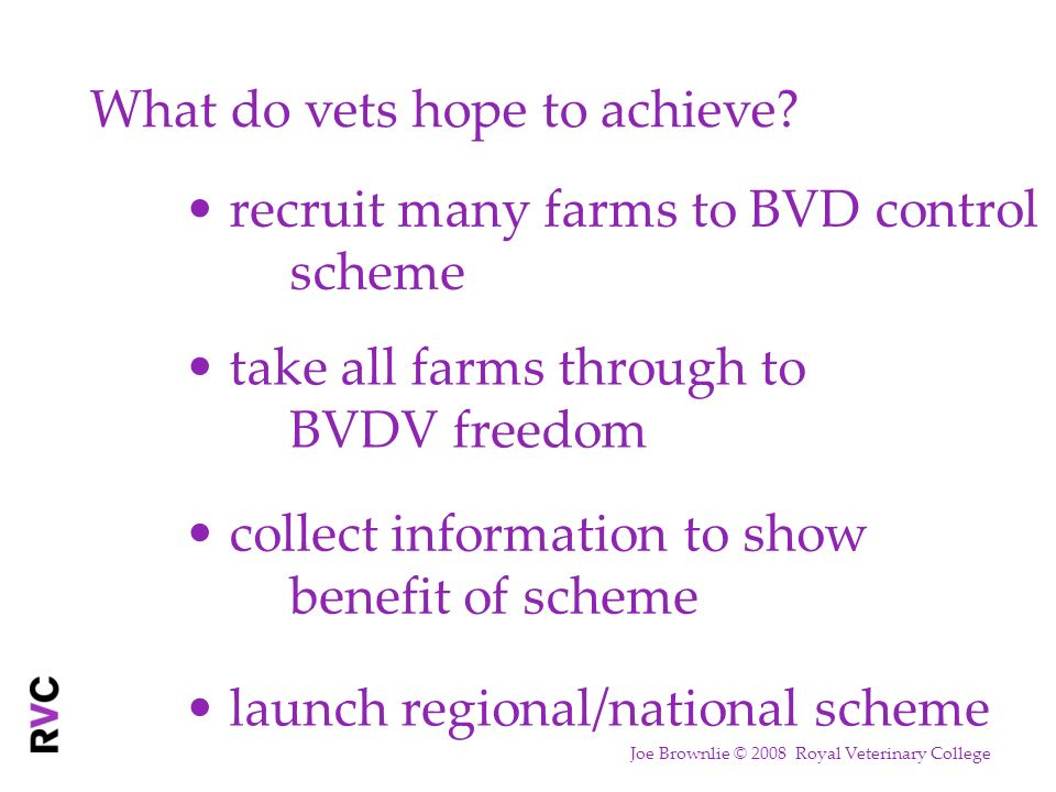 What do vets hope to achieve? recruit many farms to BVD control scheme take all farms through to BVDV freedom collect information to show benefit of s