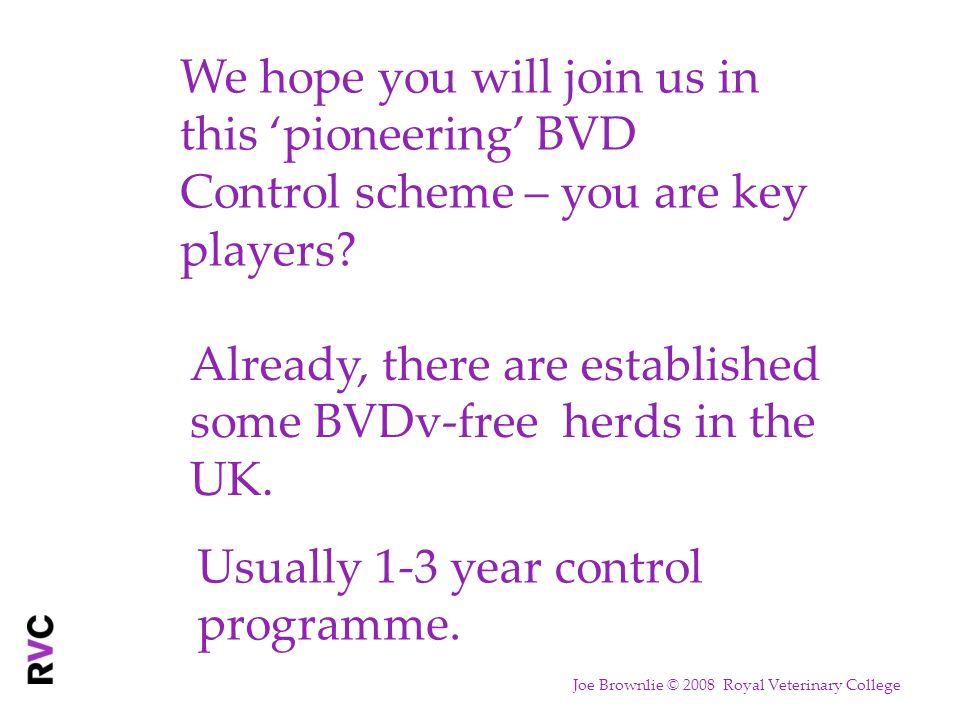 We hope you will join us in this pioneering BVD Control scheme – you are key players? Already, there are established some BVDv-free herds in the UK. U