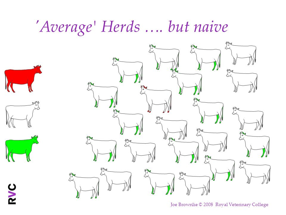 'Average ' Herds …. but naive Joe Brownlie © 2008 Royal Veterinary College