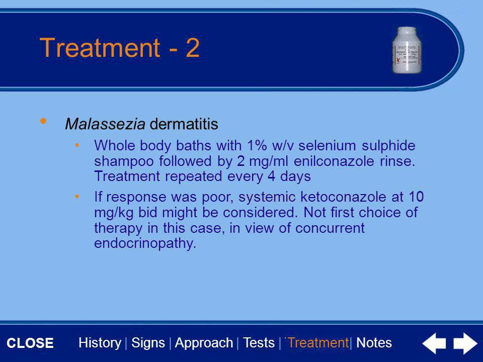 CLOSE History | Signs | Approach | Tests | Treatment | Notes Treatment - 2 Malassezia dermatitis Whole body baths with 1% w/v selenium sulphide shampoo followed by 2 mg/ml enilconazole rinse.