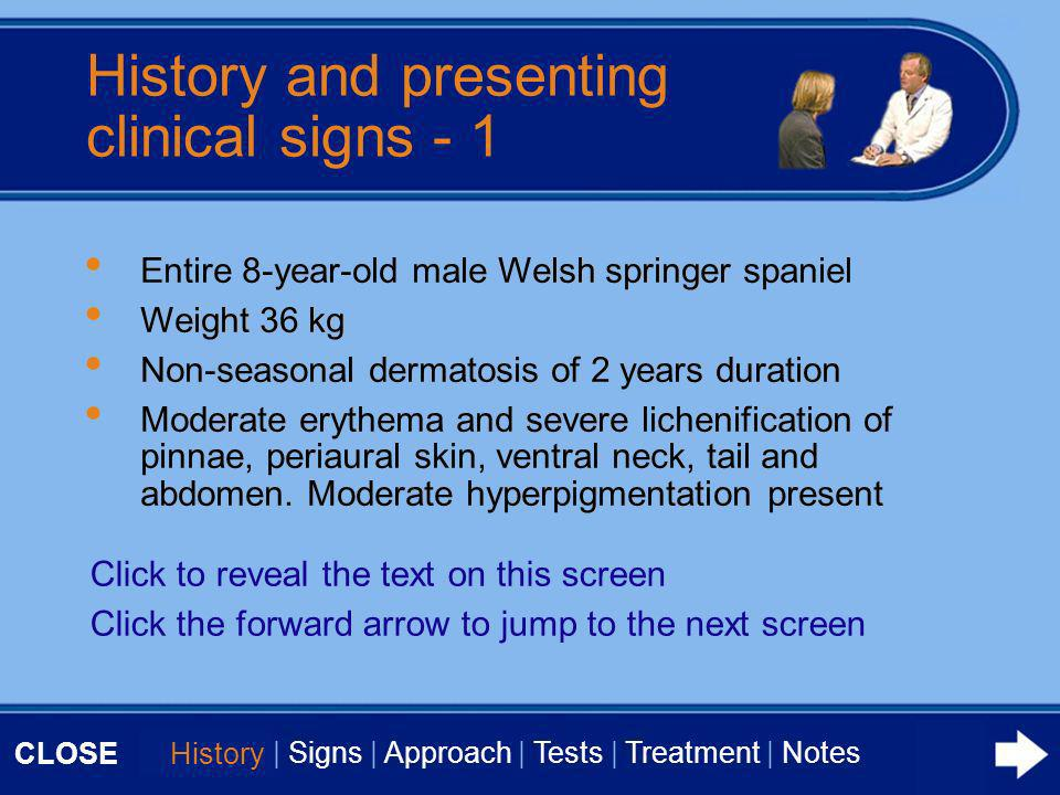 CLOSE History   Signs   Approach   Tests   Treatment   Notes Generalised seborrhoea, strong odour and dull brittle coat.