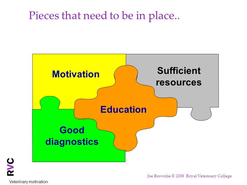 Sufficient resources Pieces that need to be in place.. Education Good diagnostics Motivation Veterinary motivation Joe Brownlie © 2008 Royal Veterinar