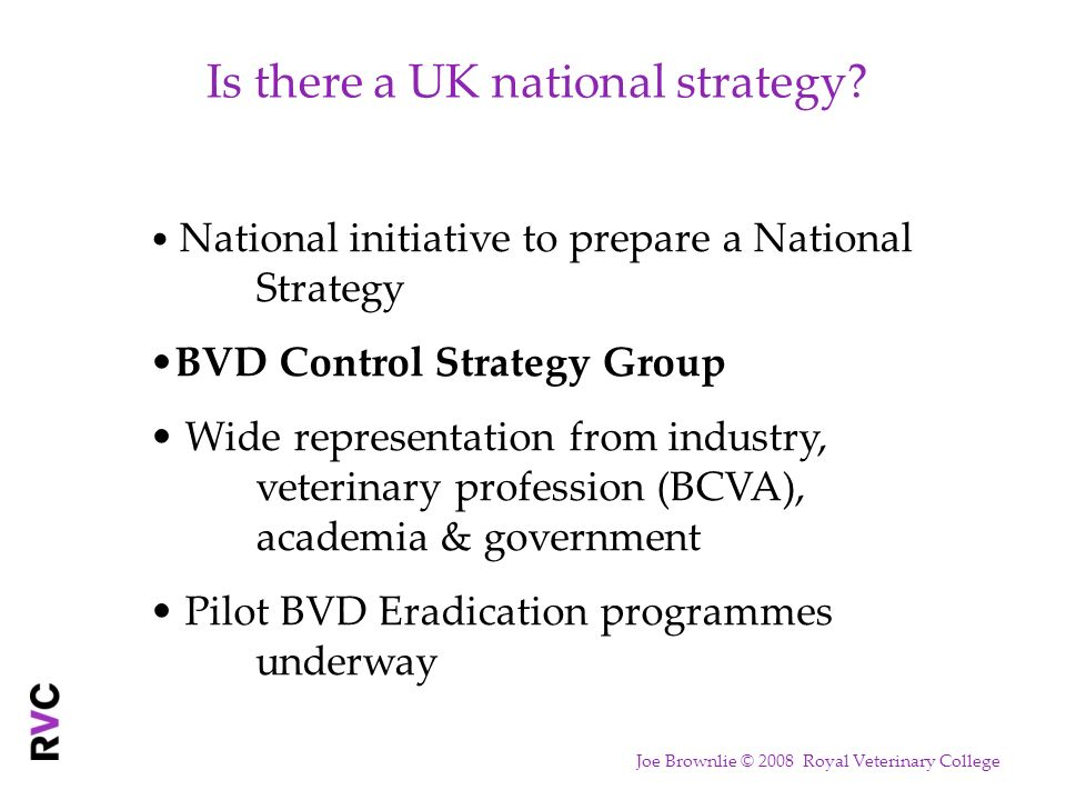 Is there a UK national strategy? National initiative to prepare a National Strategy BVD Control Strategy Group Wide representation from industry, vete