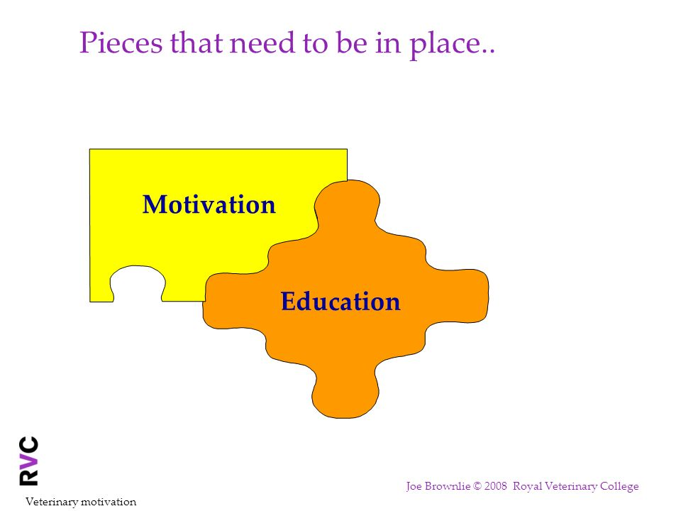 Pieces that need to be in place.. Education Motivation Veterinary motivation Joe Brownlie © 2008 Royal Veterinary College