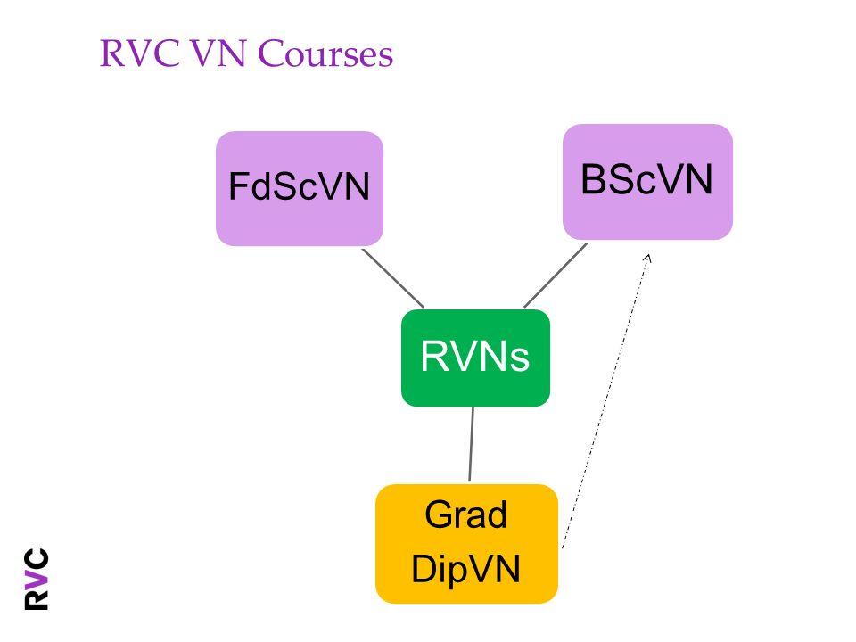 RVC VN Courses RVNs FdScVN BScVN Grad DipVN