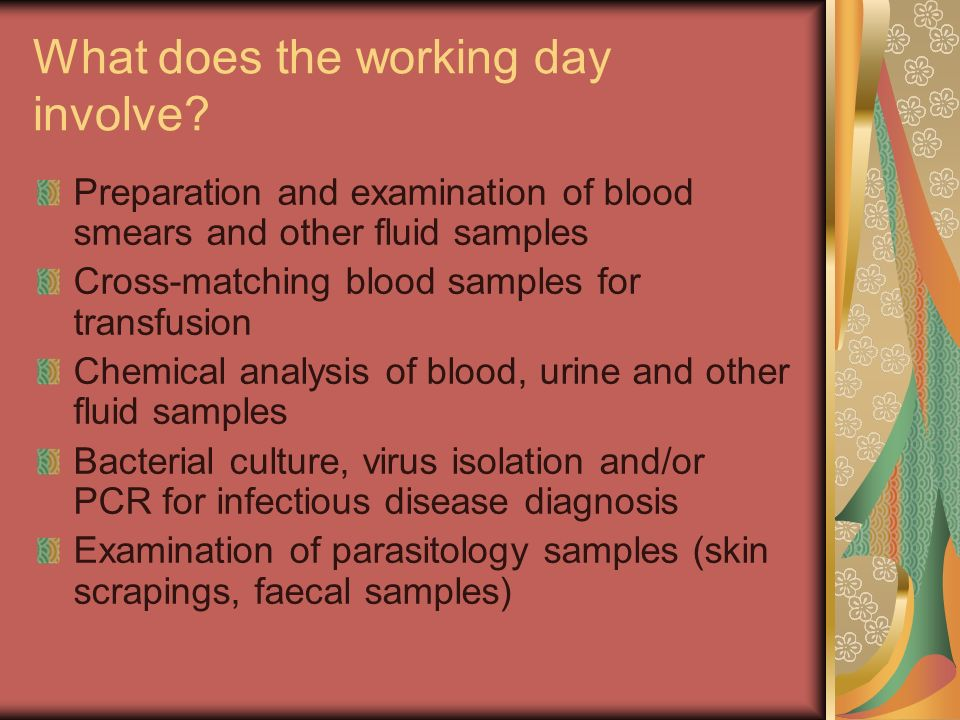 What does the working day involve? Preparation and examination of blood smears and other fluid samples Cross-matching blood samples for transfusion Ch