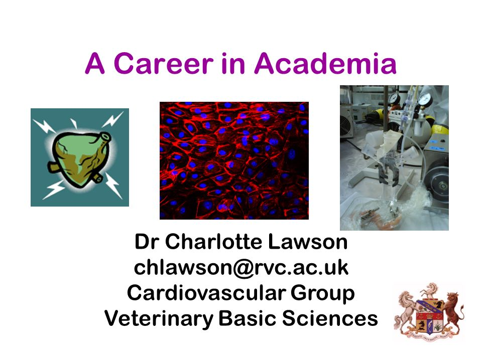 A Career in Academia Dr Charlotte Lawson chlawson@rvc.ac.uk Cardiovascular Group Veterinary Basic Sciences