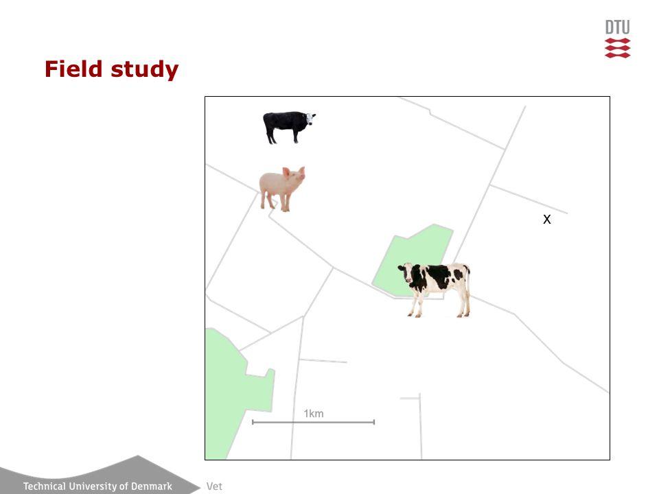 Field study x