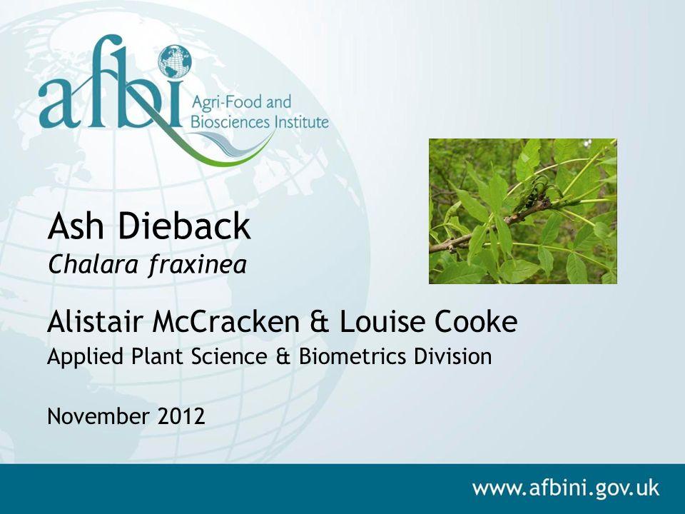 Ash Dieback Chalara fraxinea Alistair McCracken & Louise Cooke Applied Plant Science & Biometrics Division November 2012