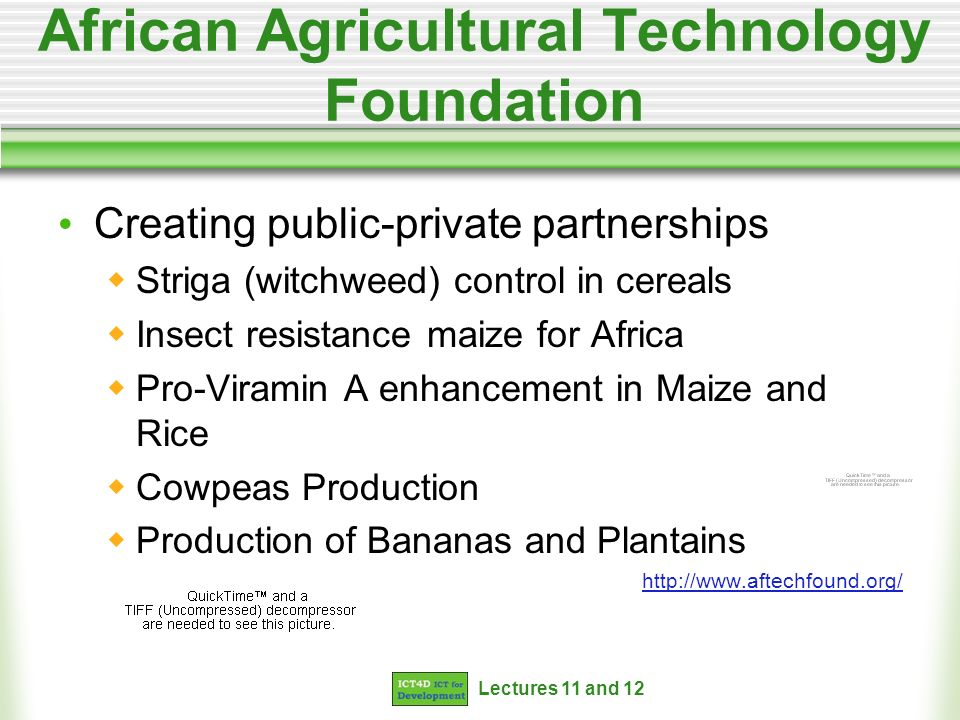 Lectures 11 and 12 African Agricultural Technology Foundation Creating public-private partnerships Striga (witchweed) control in cereals Insect resistance maize for Africa Pro-Viramin A enhancement in Maize and Rice Cowpeas Production Production of Bananas and Plantains http://www.aftechfound.org/