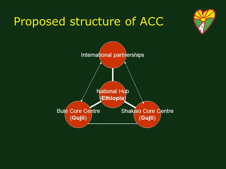Proposed structure of ACC