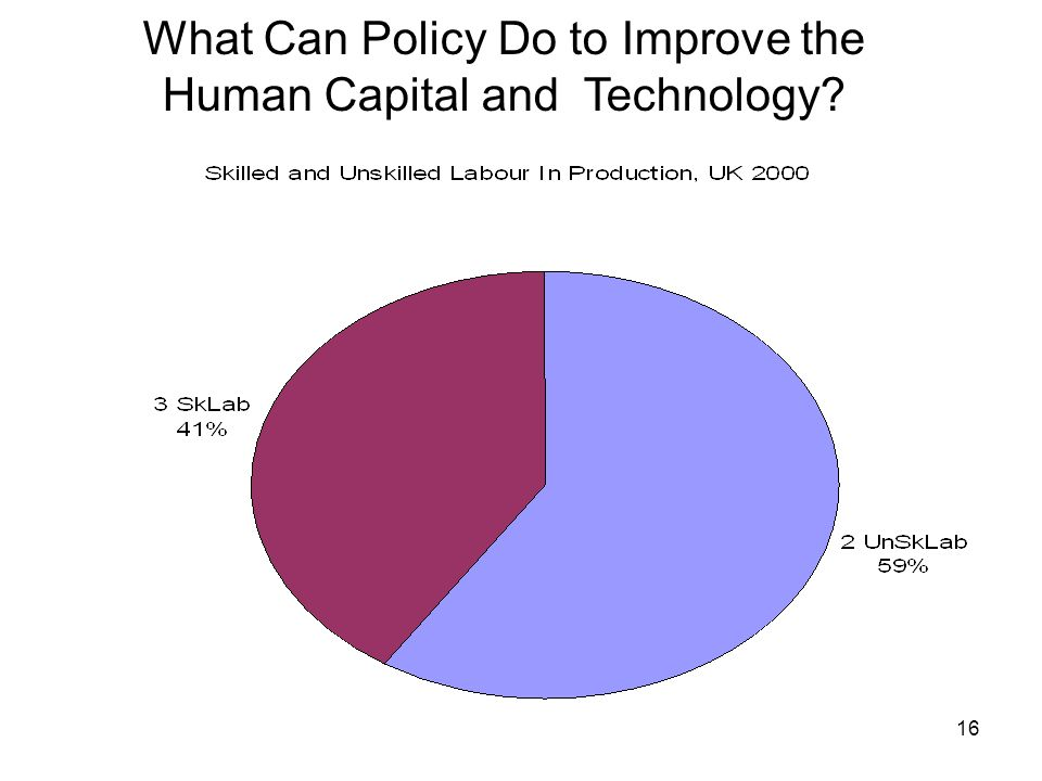 16 What Can Policy Do to Improve the Human Capital and Technology?