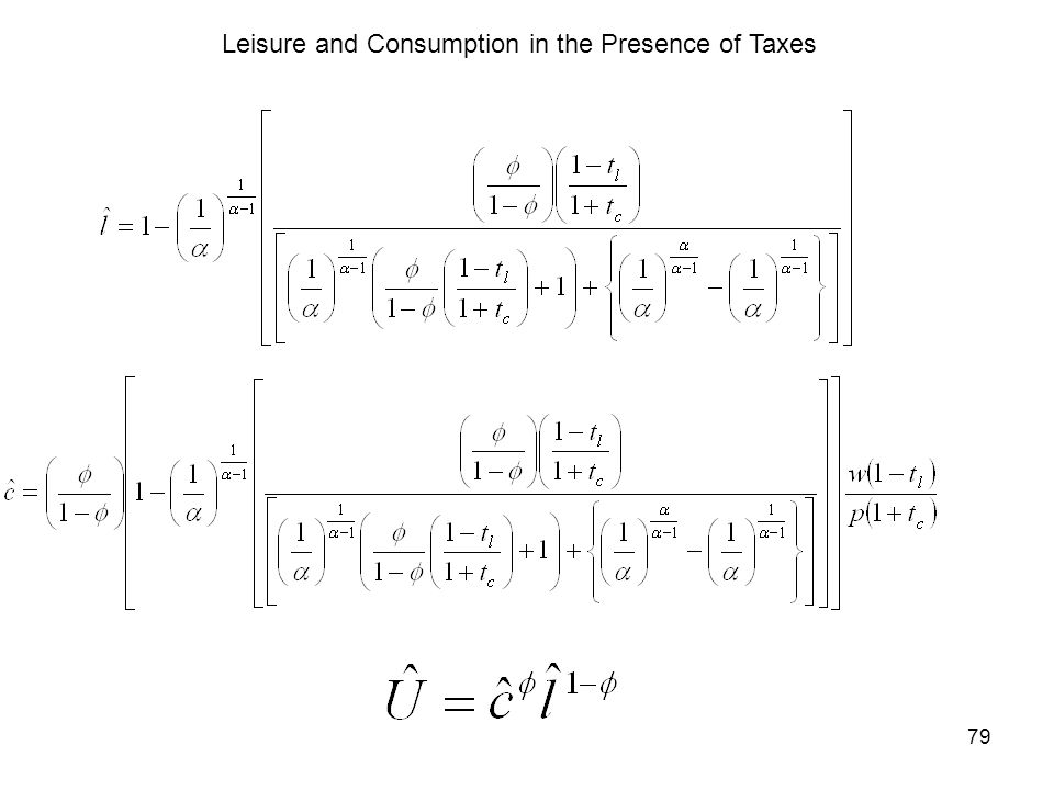 79 Leisure and Consumption in the Presence of Taxes