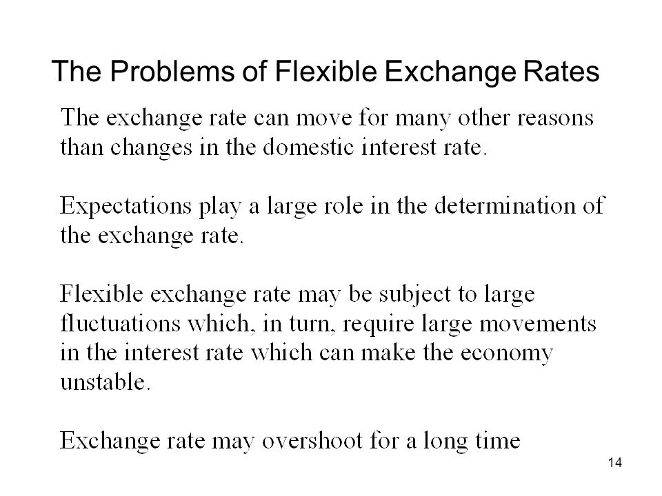 14 The Problems of Flexible Exchange Rates