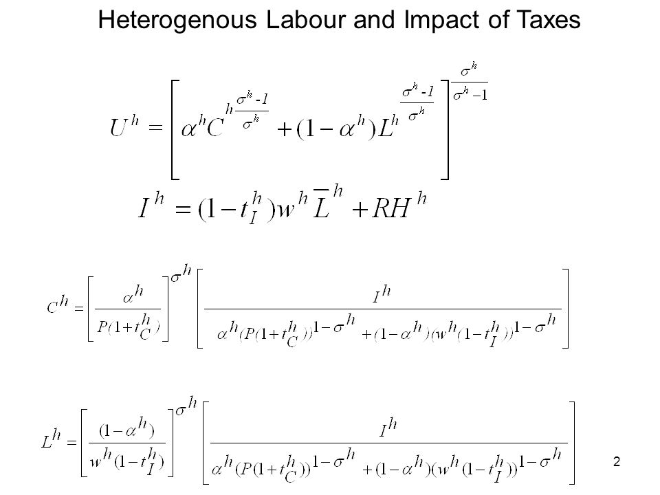 3 Income and Production in Heterogeneous Labour Model