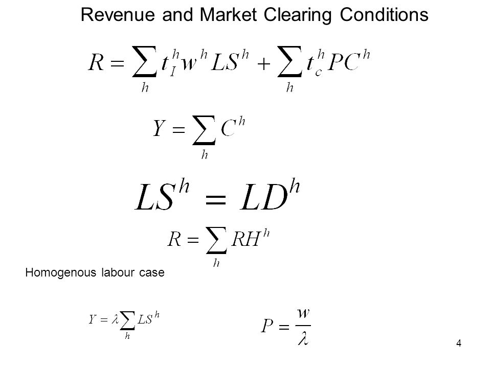 4 Homogenous labour case Revenue and Market Clearing Conditions