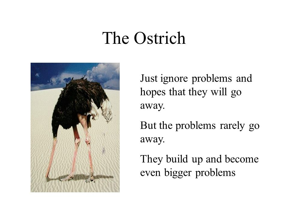 The Ostrich Just ignore problems and hopes that they will go away. But the problems rarely go away. They build up and become even bigger problems